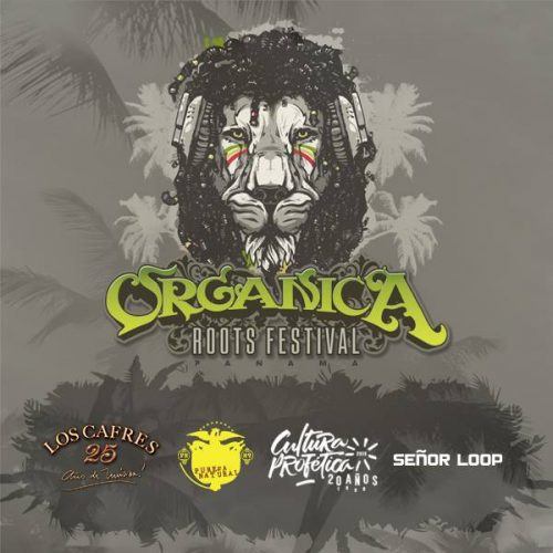 Photo of Organica Roots Festival 2016