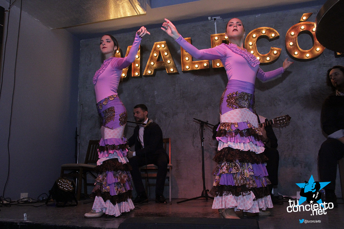 Photo of Flamenco en Malecón Casco Viejo