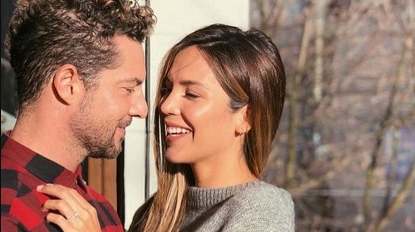 Photo of David Bisbal se comprometió con la venezolana Rosanna Zanetti
