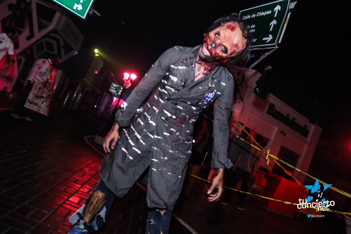 Photo of Festival del Terror en Divercity