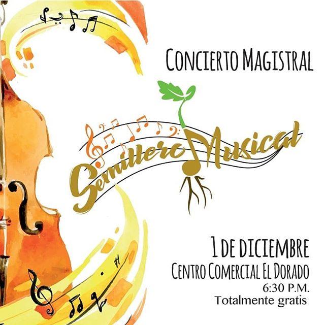 Photo of Concierto magistral «Semillero Musical»