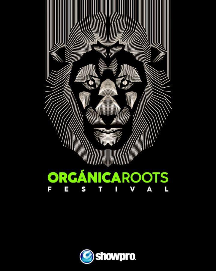 Photo of Regresa a Panamá el Festival más importante de roots el ORF