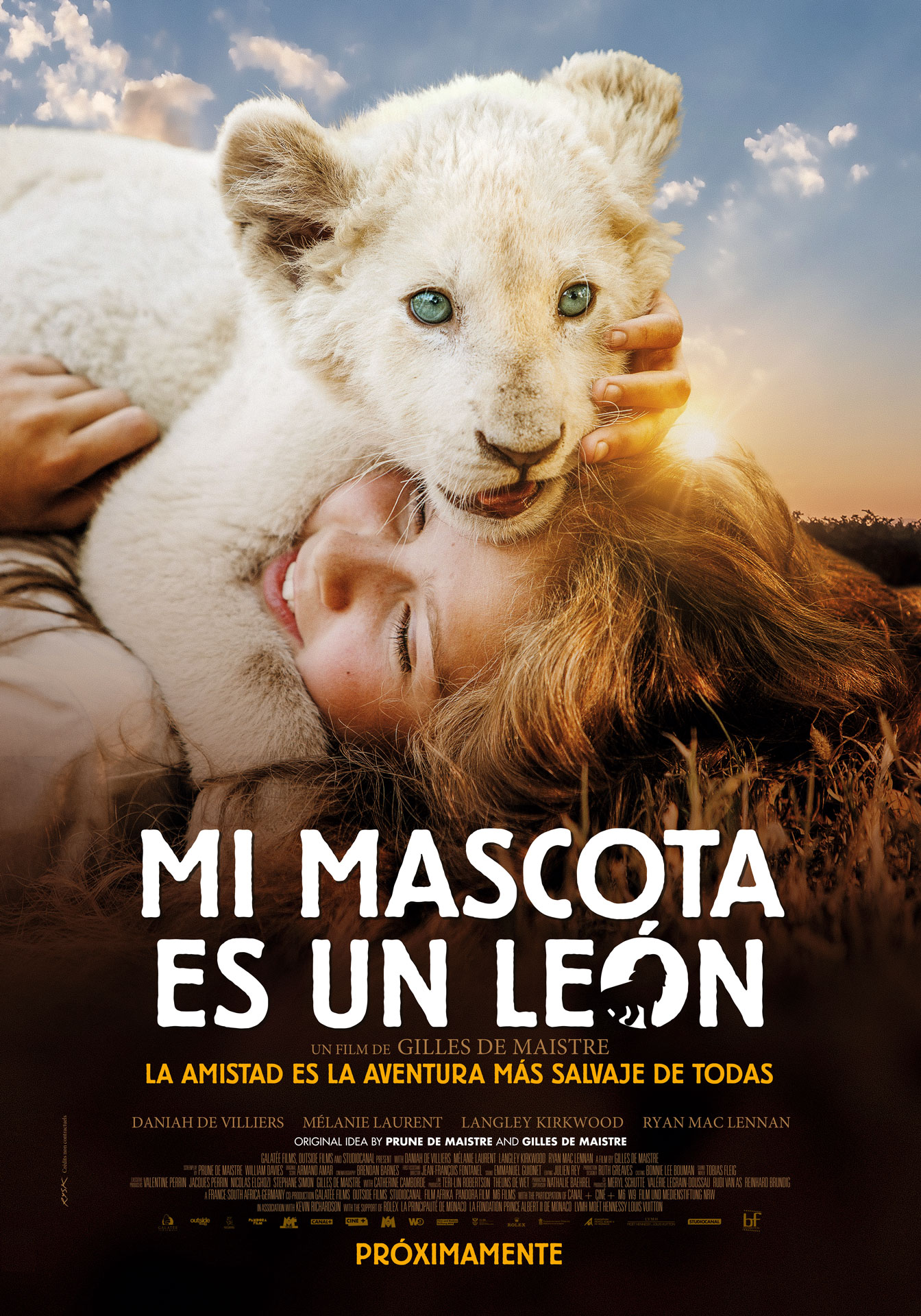 "Photo of ""Mi mascota es un león"" solo en Cines"