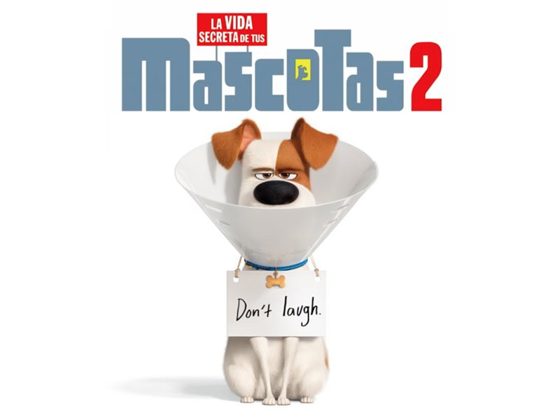 Photo of Pre venta para 'La vida secreta de tus mascotas 2'