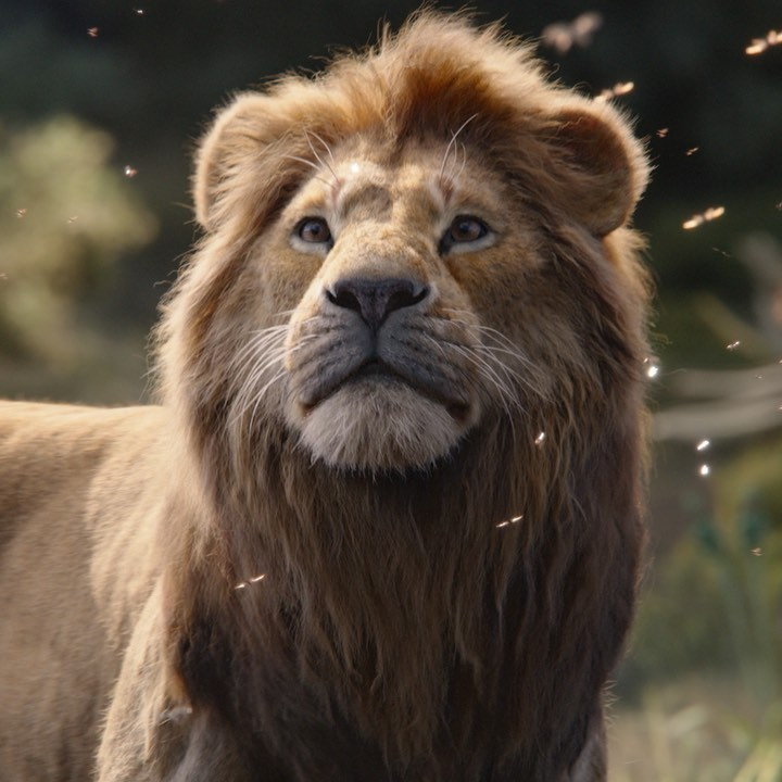 Photo of El Rey León por segunda semana consecutiva es N° 1 en los cines