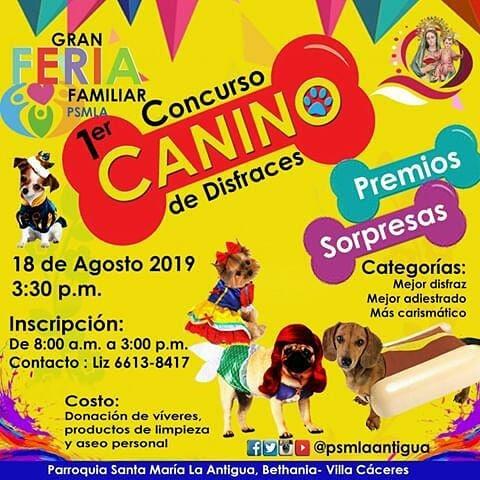 Photo of Panamá presenta el 1er. Concurso Canino de Disfraces