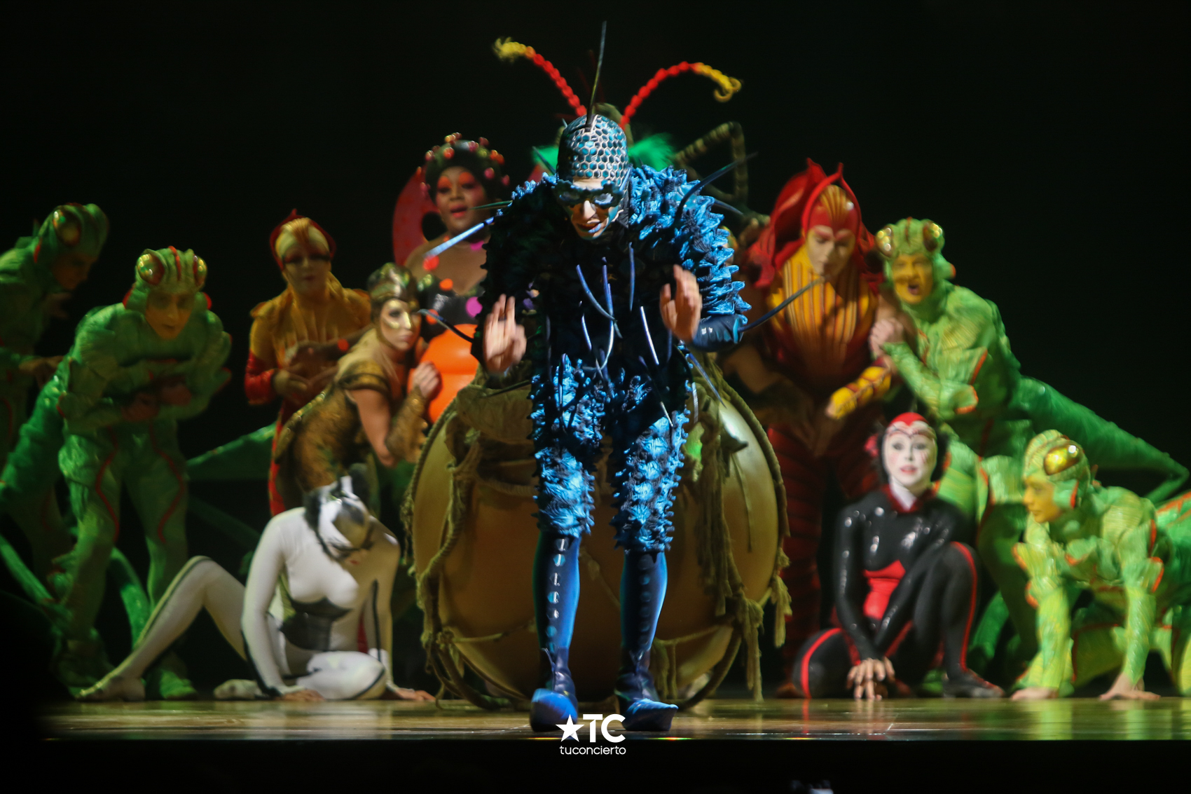 Photo of «OVO by Cirque Du Soleil» ¡Ya está en Panamá'