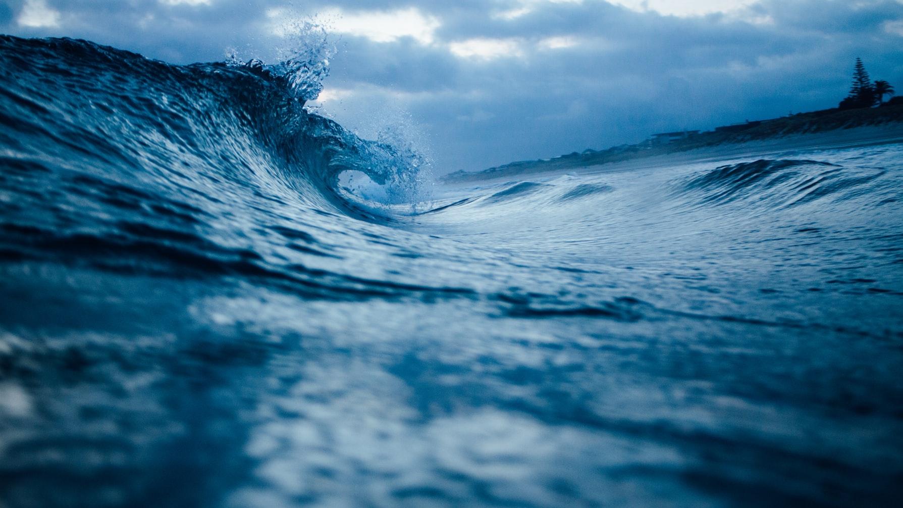 Photo of 17 de marzo ¡Día Mundial del Mar!
