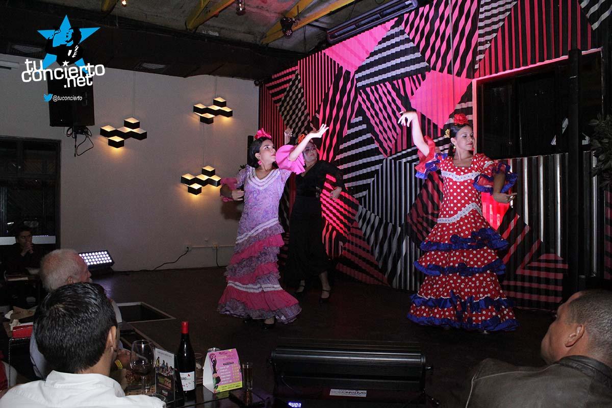 Photo of Flamenco por Anita Loynaz Academia