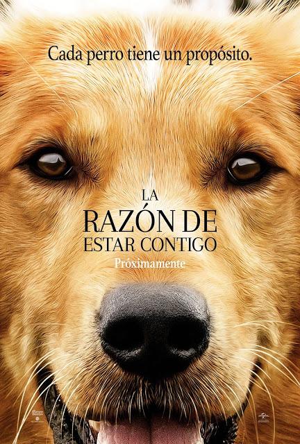 Photo of La Razón de Estar Contigo