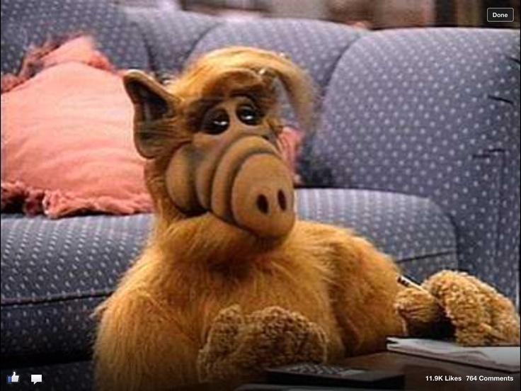 Photo of Vuelve Alf, el extraterrestre más querido de la pantalla