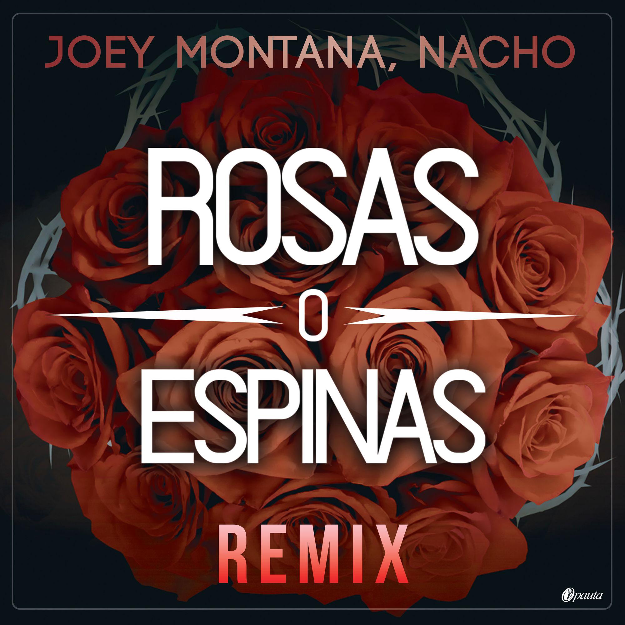 Photo of Joey Montana estrena el remix de 'Rosa y Espina'