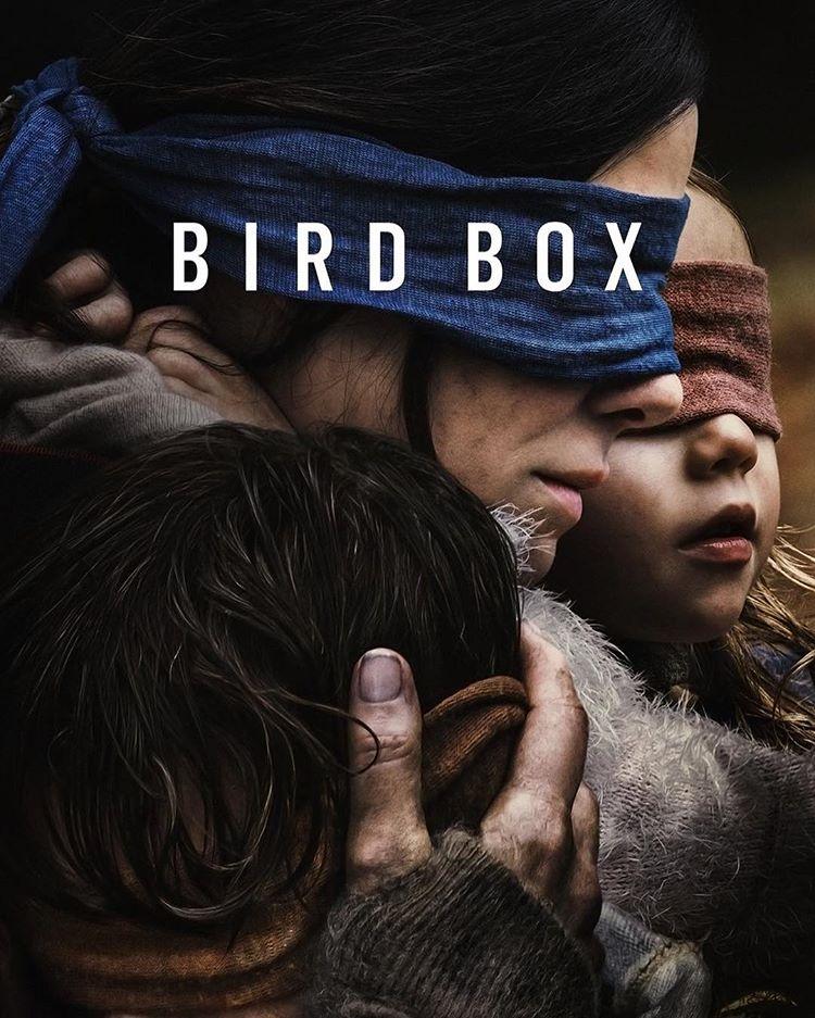 Photo of Bird Box se convierte en la más destacadas de 2018