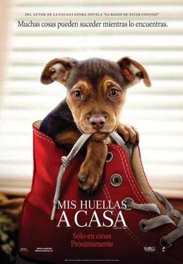 Photo of Estreno de 'Mis Huellas a casa' en Cinemark