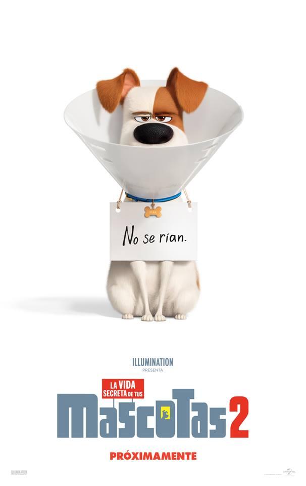 Photo of Estreno en cines de 'La vida secreta de tus mascotas 2'