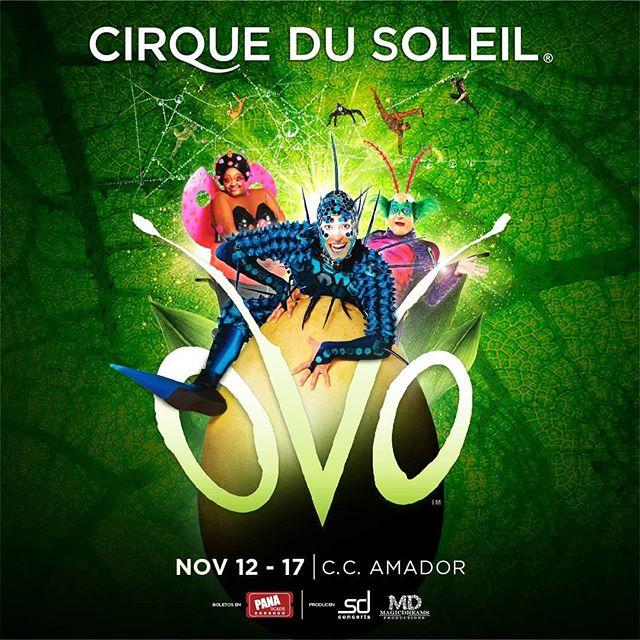 Photo of Llega a Panamá Cirque du Soleil con su espectáculo OVO