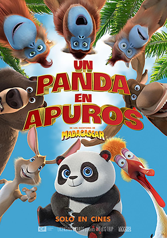 Photo of Un Panda en Apuros se estrena en los cines de Panamá