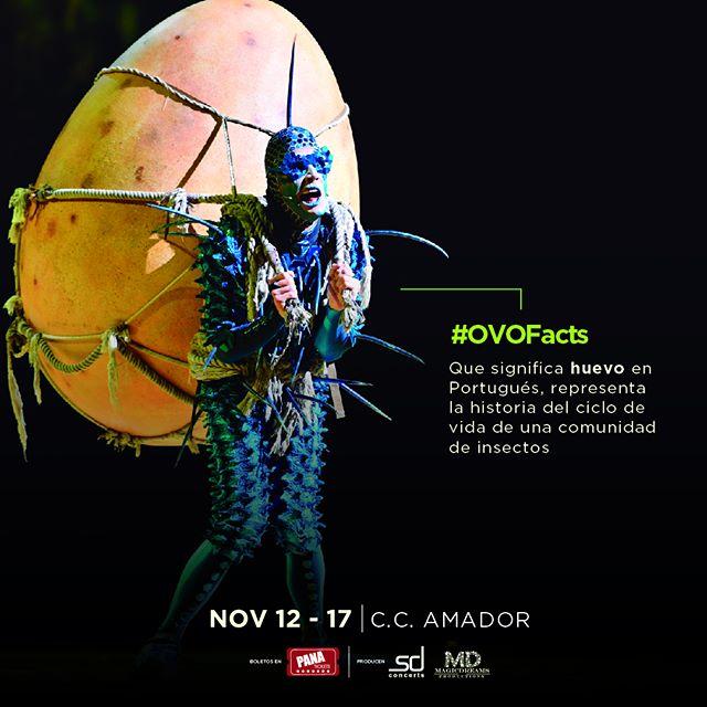 Photo of ¡Atención! Panamá aún hay boletos para «OVO by Cirque Du Soleil» del 12 al 17 de noviembre en el Centro de Convenciones Amador